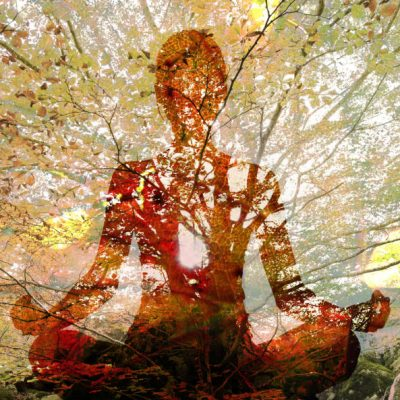Double exposure of silhouette of woman doing yoga in lotus position over tree. Concept of connection with the universe and nature.